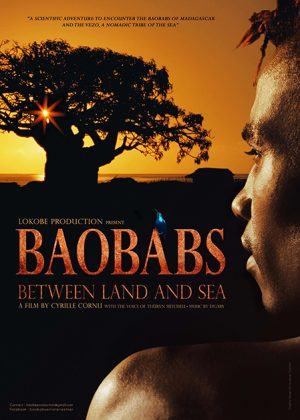 Baobabs – Between Land and Sea – France/Madagascar