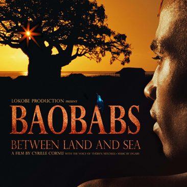 Baobabs – Between Land and Sea – France/Madagascar