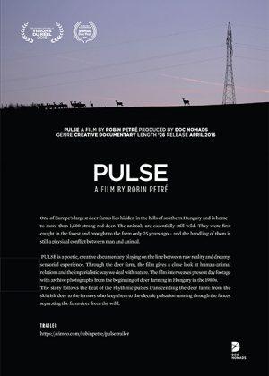 Pulse – Hungary/Belgium/Portugal