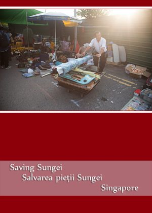 Saving Sungei – Singapore