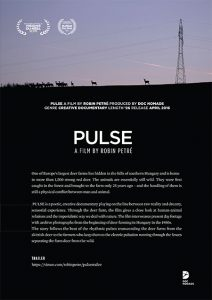 pulse_flyer_ii-1