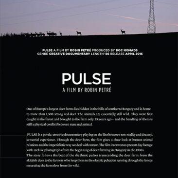 Pulse/Puls – Hungary-Belgium-Portugal/Ungaria-Belgia-Portugalia