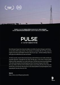 pulse_flyer_ii-1